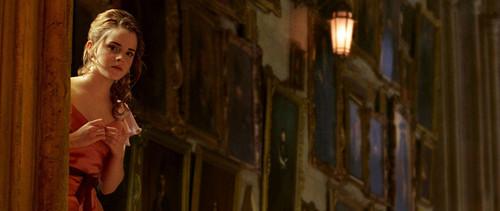 Beyond 14K fondo de pantalla containing a calle titled Hermione