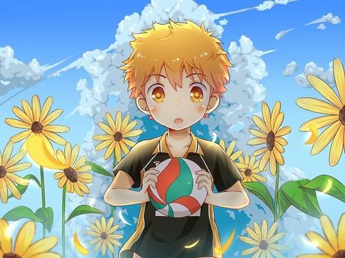 Haikyuu!!(High Kyuu!!) wallpaper probably with anime titled Hinata Shouyou