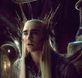 His Eyes... - thranduil photo
