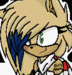INTRODUCING MYSELF AND MY CHARRIES - sonic-the-hedgehog icon