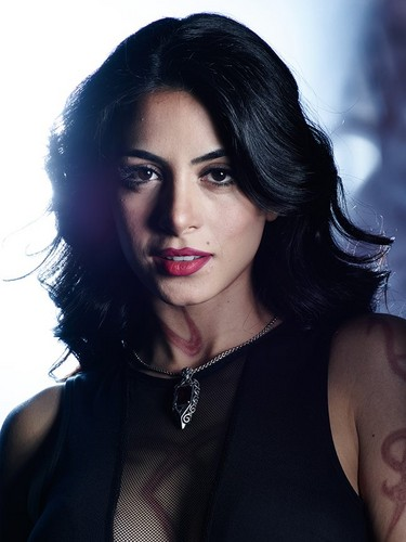 Shadowhunters TV Показать Обои probably with a portrait titled Isabelle Lightwood