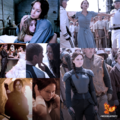Katniss Everdeen - the-hunger-games photo