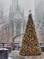 Magical Christmas tree - daydreaming photo