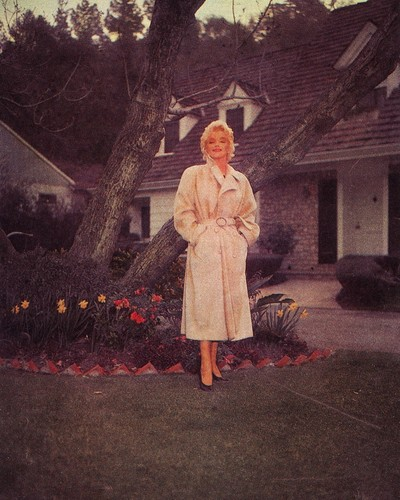 marilyn monroe fondo de pantalla with a pelaje, piel capa and a business suit titled Marylin