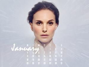 NP.COM Calendar - January 2016