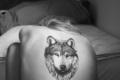 Tattoos - tattoos photo