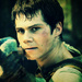 The Maze Runner - movies icon
