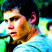 Thomas - the-maze-runner icon