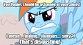 You Ponies Should Be Ashamed Of Yourself - my-little-pony-friendship-is-magic photo