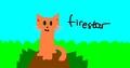 firestar - warrior-cats photo