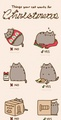 https 3A 2F 2F36.media.tumblr.com 2F627bbd6da9c893c92c575fbf2611c473 2Ftumblr nz5itmxcL91uerdf4o1 12 - pusheen-the-cat photo