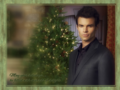 morsels of delight - the-vampire-diaries-tv-show wallpaper