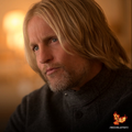 Haymitch Abernathy - the-hunger-games photo