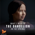 """What I Need is the Dandelion in the Spring."" - the-hunger-games photo"