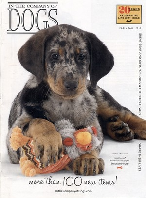 Cover In The Company Of Cani Fall 2015