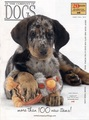 Cover In The Company Of Dogs Fall 2015  - dogs photo
