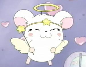 Cute hámster anime