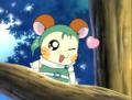 Cute hamster Anime