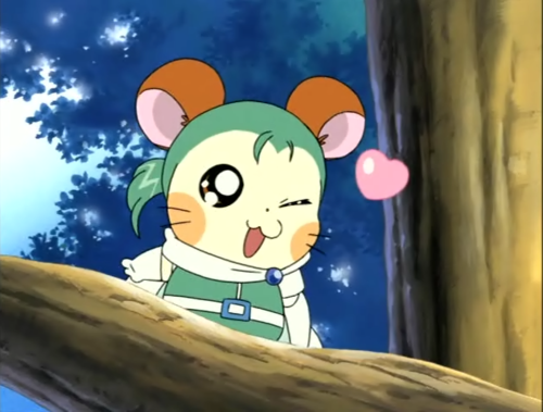 Anime Wallpapers Cute Hamster Collection 9 Wallpapers