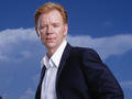 david-caruso - David Caruso wallpaper