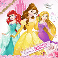 Disney Princesses - disney-princess photo