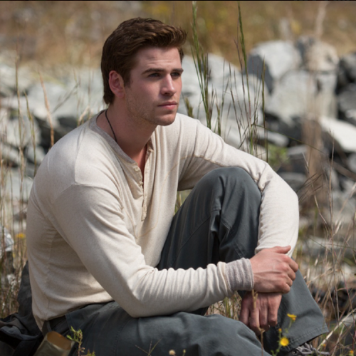 Hunger Games fond d'écran entitled Gale Hawthorne