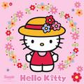Hello Kitty - hello-kitty photo