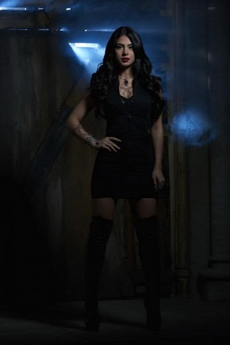 Shadowhunters TV Zeigen Hintergrund possibly with bare legs, a leotard, and tights titled Isabelle Lightwood