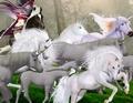 Liliana chasing an herd of beautiful wild unicorns - queens-blade fan art