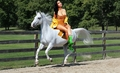 Nicki Minaj riding her Beautiful Lippizaner Stallion - nicki-minaj fan art