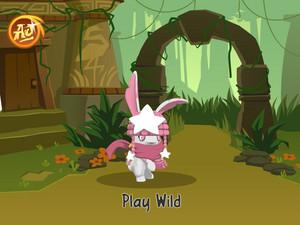 Princess The Bunny Animal 잼