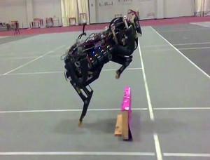 Robots hi tech