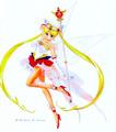 Sailor Moon  - sailor-moon fan art