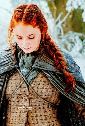 Sophie as Sansa Season 6