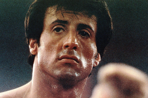 Sylvester Stallone wallpaper probably with a portrait called Sylvester Stallone