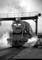 Teresa in black and white - thomas-the-tank-engine photo