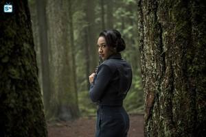 The Flash - Episode 2.14 - Escape from Earth-2 - Promo Pics