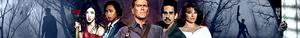 ash vs ed banner