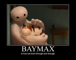 baymax দ্বারা leahk90 d8o60il