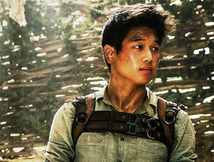 maze runner ki hong lee as minho main
