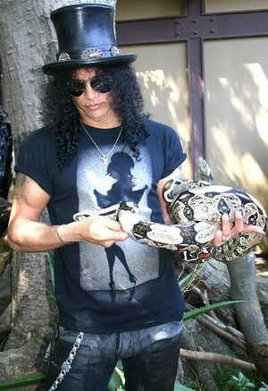 slash pics with animales <3