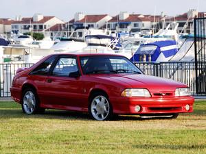 1993 Ford mabangis na kabayo SVT ulupong