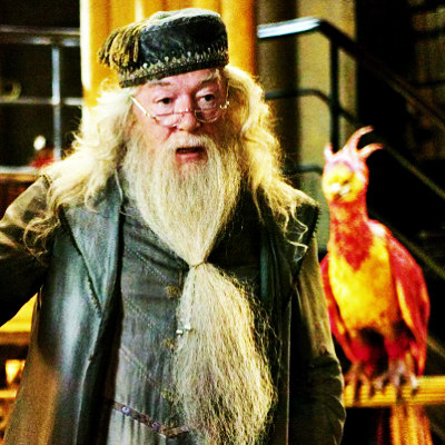 HaleyDewit achtergrond titled Albus Dumbledore