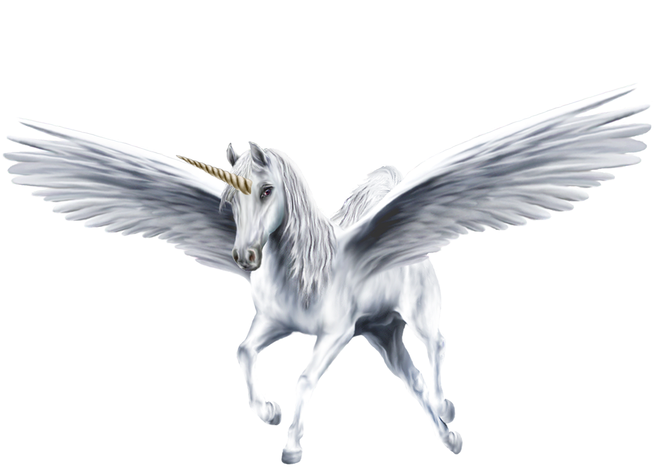 An Beautiful White Winged Unicorn - Unicorns Fan Art ...