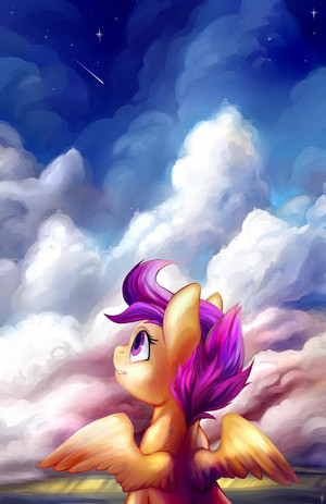 Awesome poney Pictures