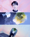 BTS JPN Run ♥ - bts photo