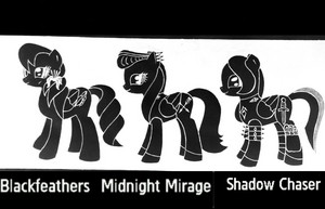 Blackfeathers and the other black mares