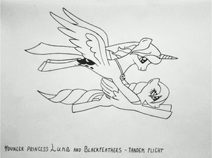 Blackfeathers and Luna tandem flight