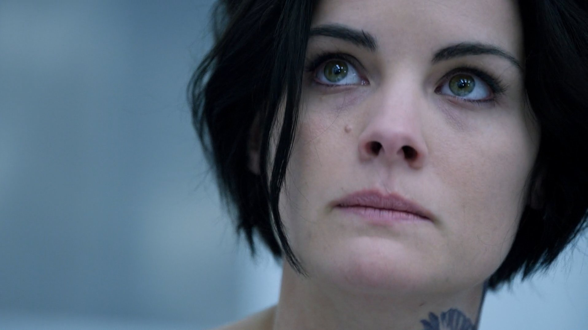 blind spot show return date Blindspot season 2 will pick up exactly where the finale ended in its what else can we expect from the show and when will it return to.