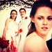 Breaking Dawn Part I - edward-and-bella icon